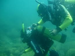 Mergulho na Ilha do Arvoredo