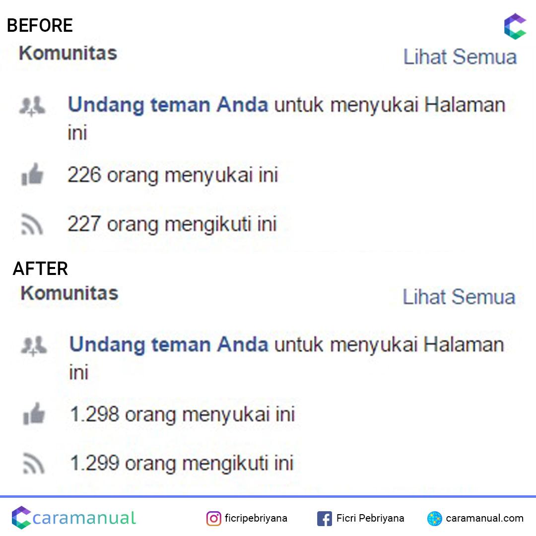 jasa tambah like fanpage facebook 2