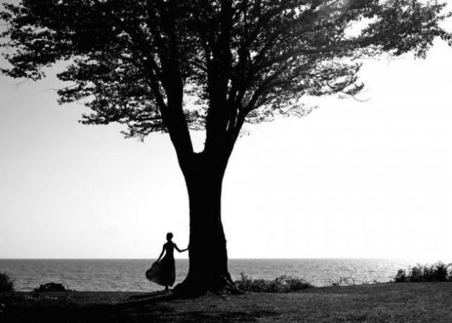 τι δέντρο είσαι και τι αποκαλύπτει για την προσωπικότητά σου