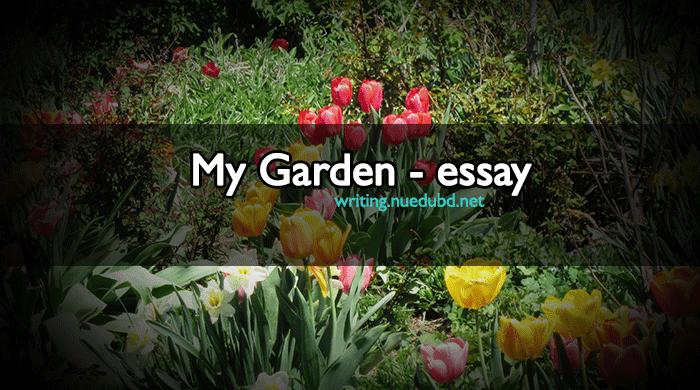 forms of business organization essay Essay on My Garden