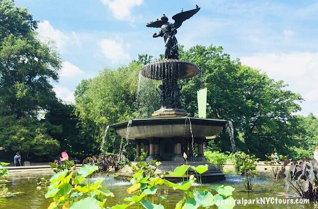 The Bethesda Terrace - Central Park Tours & Bike Rentals