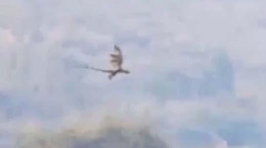 'Misteriosos Dragón' es filmado volando por las montañas de China
