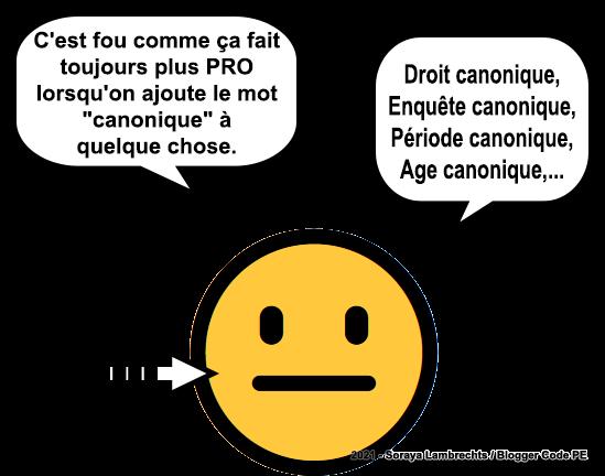 Blogger Humour - smiley canonique.