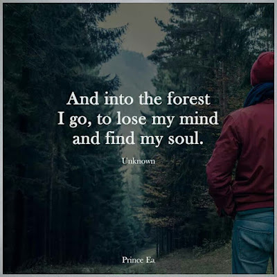 Nature Mind Quotes