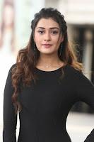 Payal Rajput At Venky Mama Movie Success Meet HeyAndhra