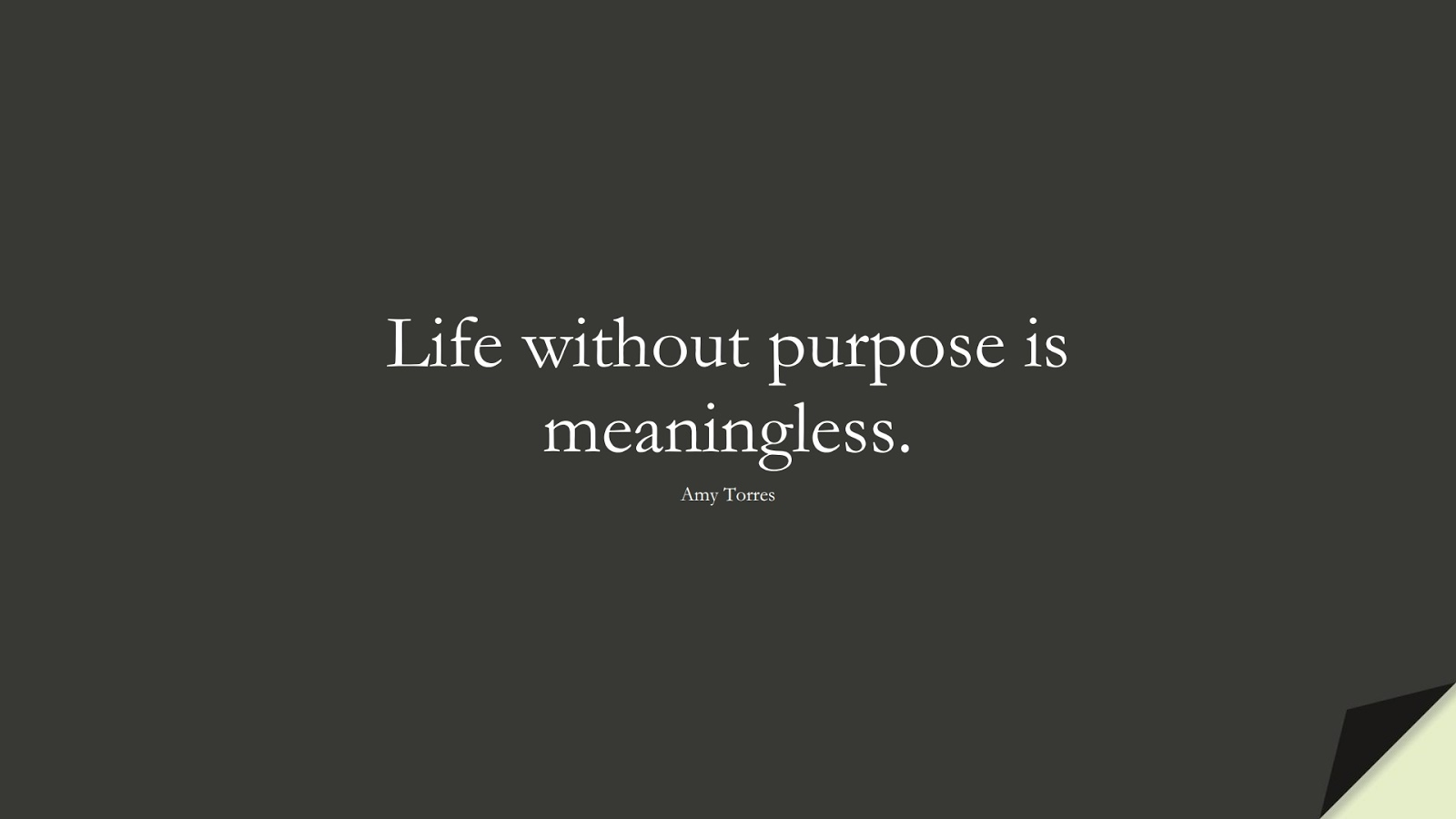 Life without purpose is meaningless. (Amy Torres);  #InspirationalQuotes