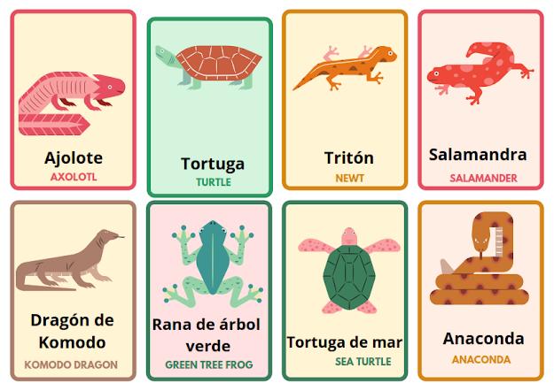 reptiles in Spanish
