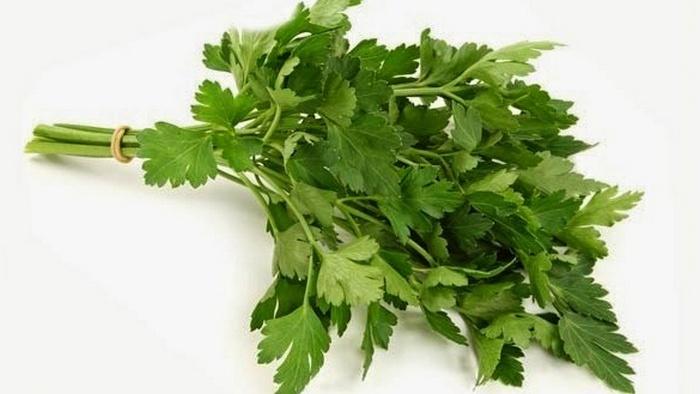 daun mint wikipedia, jual daun mint, daun mint beli dimana, cara menanam daun mint, ciri-ciri daun mint, bibit daun mint, cara mengolah daun mint, daun mint untuk jerawat
