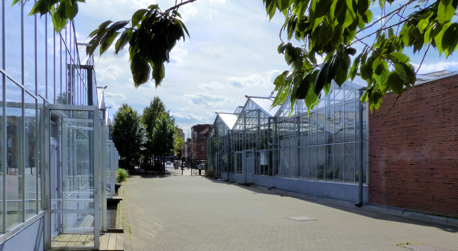 Jardin botanique, Tourcoing - Serres