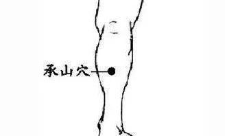 濕重是標,脾虛是本。祛濕補脾,這兩種灸法最有效早灸早斷根!(健脾線)