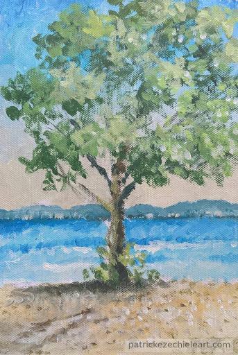 Albero a Castiglione del Lago