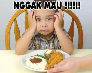 Menghadapi Anak Dengan Kebiasaan Susah Makan.