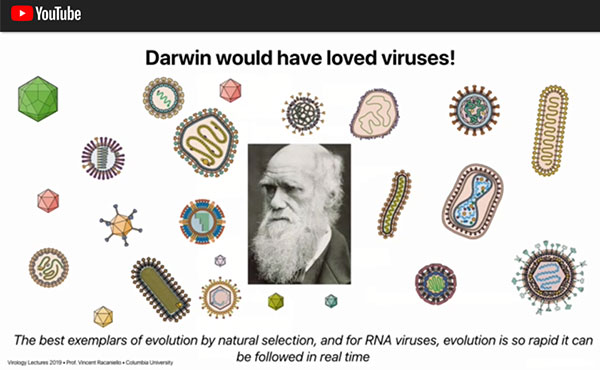 Darwin had the insight to see evolution, but it would have been much easier with viruses (Source: Vincent Racaniello)