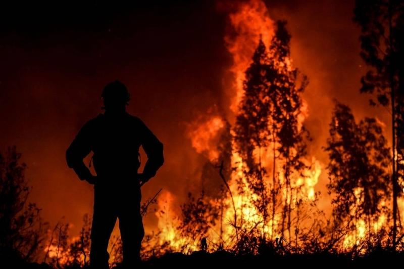 Mil bomberos luchan contra gran incendio en Portugal