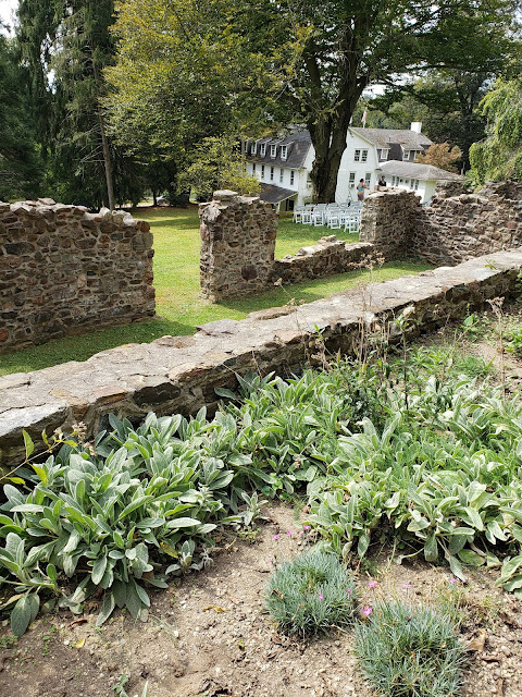 the washington herb garden and hospital ruins