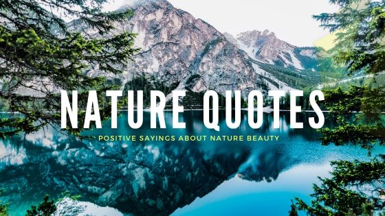 best nature quotes - positive sayings about nature beauty