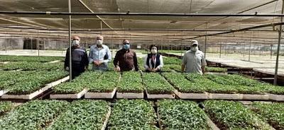 وكيل زراعة الفيوم يعقد الاجتماع الدوري لمجلس إدارة مشروع الشتلات