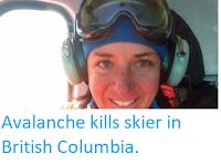 https://sciencythoughts.blogspot.com/2018/03/avalanche-kills-skier-in-british.html