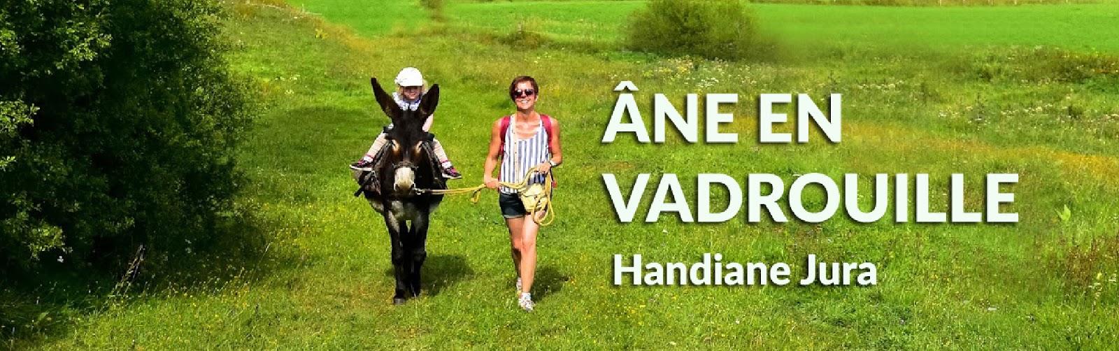 Aude : Remise d'une selle à Loc d Ânes …