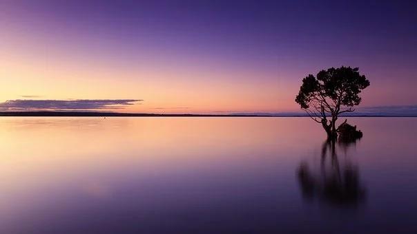 Different Horizon