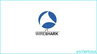 wireshark adalah