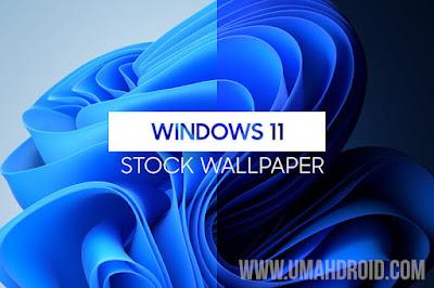 Microsoft Windows 11 Terbaru