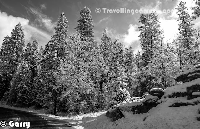 Garry along with three friends hired a cab from San Jose and started the journey towards Yosemite in early morning. This Photo Journey shares from chilling moments form Yosemite National Park.Usually winters is not considered as right time to visit Yosemite. The real beauty of Yosemite can be best explored during summers. All these photographs are shot during winters when Yosemite was covered with white sheet of fresh snowYosemite National Park is spanning eastern portions of Tuolumne, Mariposa and Madera counties in the central eastern portion of California, United States. The park covers area of approximately 760K acres and reaches across the western slopes of the Sierra Nevada mountain chain. Drive inside the national park is amazing and the feeling driving there can't be expressed in words. Different types of tress all around covered with snow and mist in the background makes the whole environment very beautiful. Over 3.5 million people visit Yosemite every year. Yosemite is designated a World Heritage Site in 1984. And now it's internationally recognized for its spectacular granite cliffs, waterfalls, clear streams, Giant Sequoia groves, and biological diversity. Approximately 94% of the park is designated wilderness.Yosemite is one of the largest and least fragmented habitat blocks in the Sierra Nevada, and the park supports a diversity of plants and animals. Know more about Yosemite at http://en.wikipedia.org/wiki/Yosemite_National_Park   http://www.nps.gov/yose/index.htm