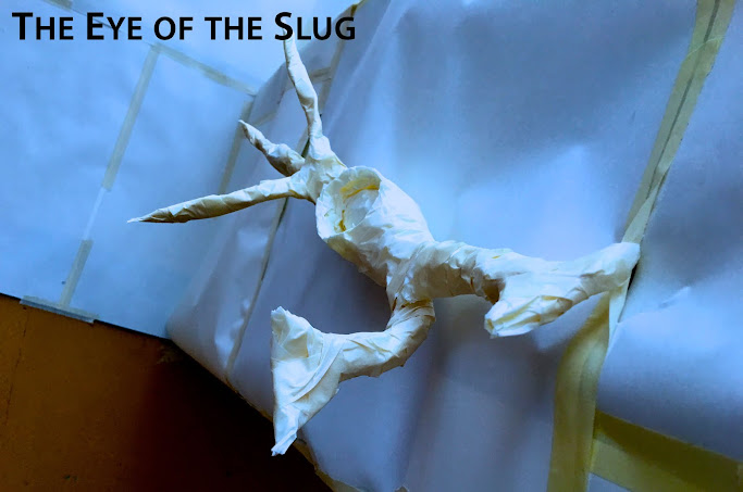 The eye of the slug