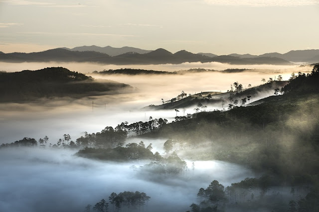 Vietnam's 5 most attractive travel destinations for January 2