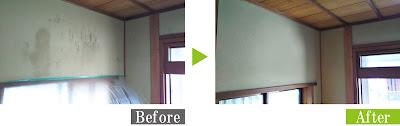 カビの発生した聚楽壁を安心安全な環境対応型特殊洗浄G-Eco工法で施工