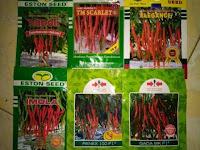 benih cabe hibrida, lmga agro, cara menanam cabe, toko pertanian online