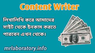 Content Writer - MR Laboratory