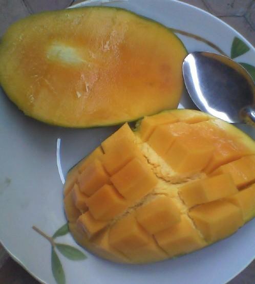 buah mangga dan cara memakannya