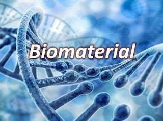 bioproduct in human life