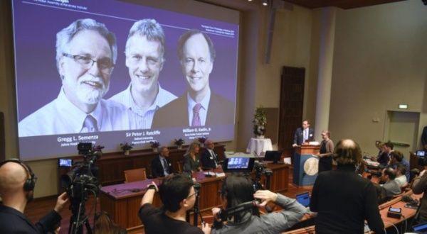 Otorgan Nobel de Medicina a trabajos sobre adaptación celular