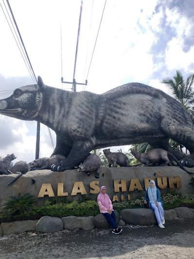 Itinerary 3 Hari di Bali, Enaknya Kemana Aja?