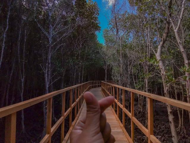 Wisata Alam Banyuwangi Yang Lagi Hits