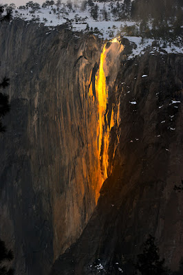 Glowing Horsetail – Yosemite