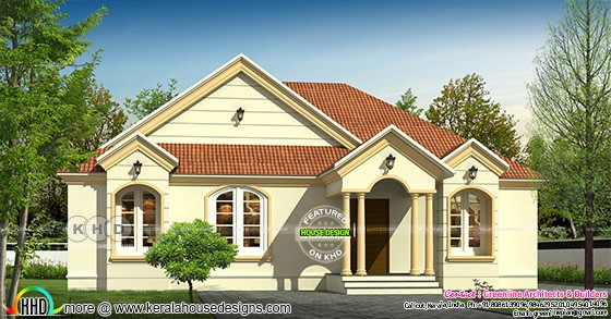1579 sq-ft single floor sloping roof house
