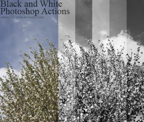 blanco y negro acciones para photoshop