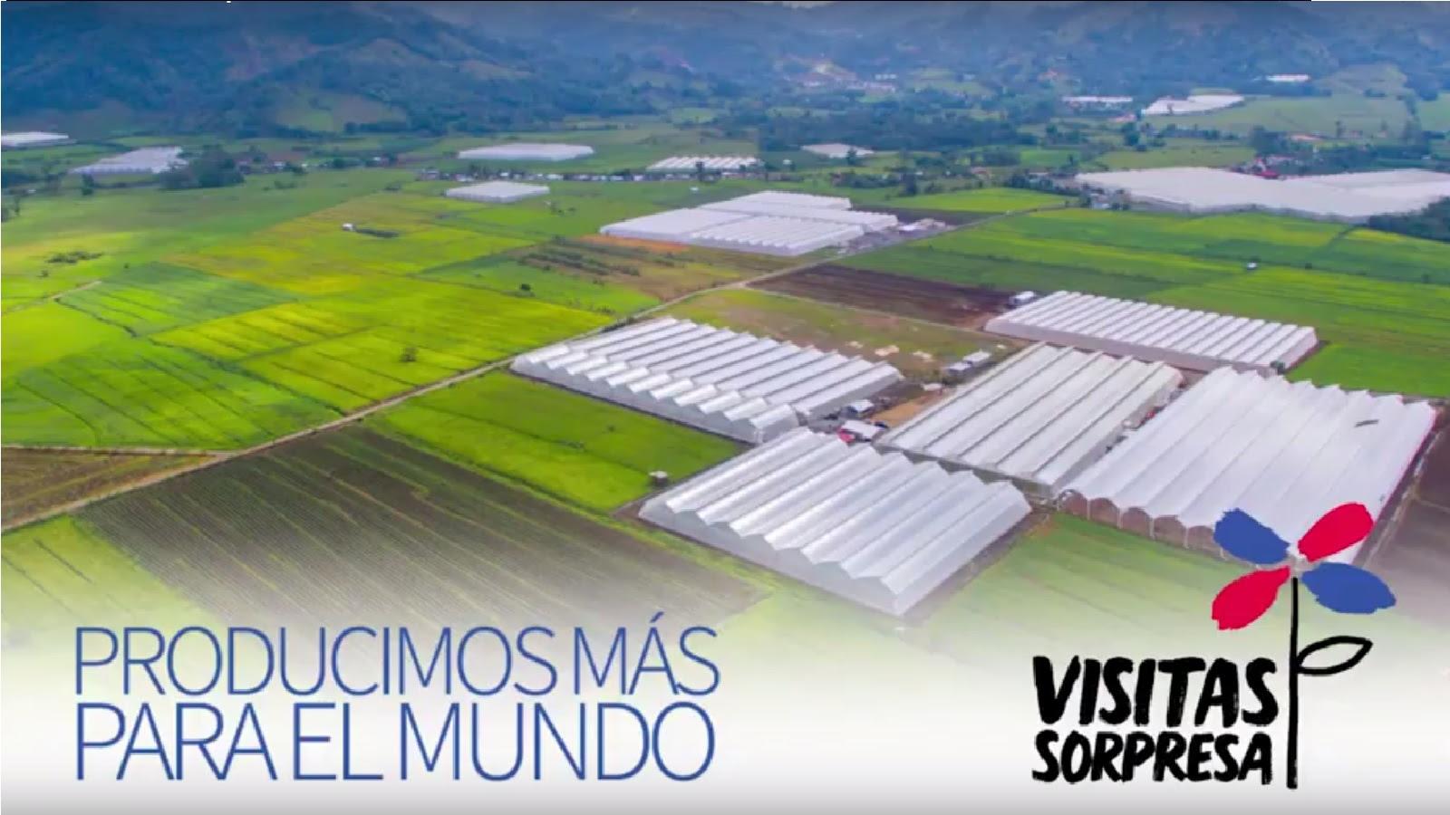VIDEO: Producimos más para el mundo