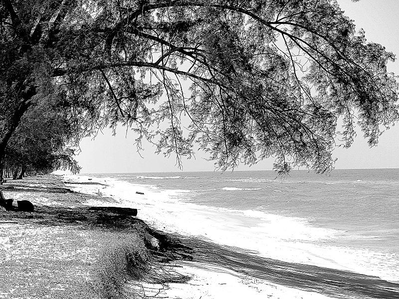 Quiet On The Beach 05