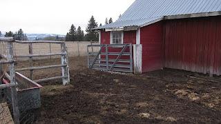 Donn: Small Metal Horse Barns 8x10x12x14x16x18x20x22x24