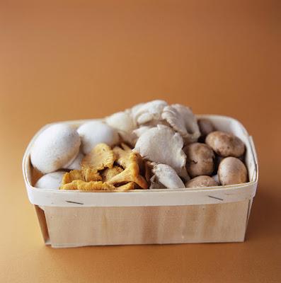 Mushroom Supplier Company in Hubli-Dharwad