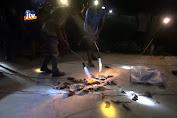 Dapat Hadiah Seribu Per Ekor, Warga Ramai-Ramai Buru Tikus