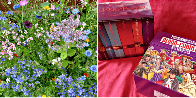 Flowers in my garden and some books.
