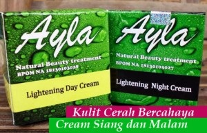 jual Ayla cream siang bagus aman BPOM herbal alami tradisional