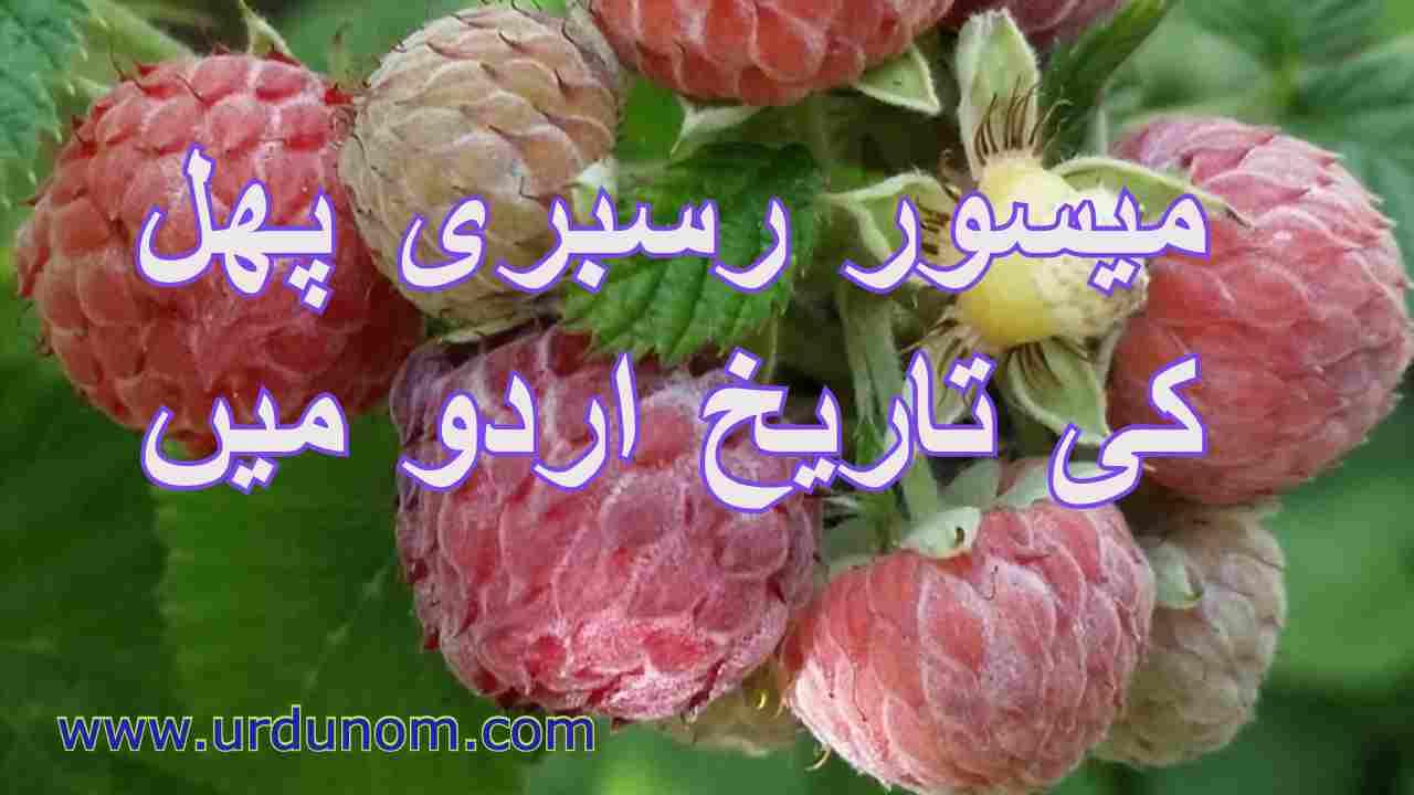 میسور رسبری پھل کی تاریخ اردو میں | History Mysore Raspberry Fruit in Urdu
