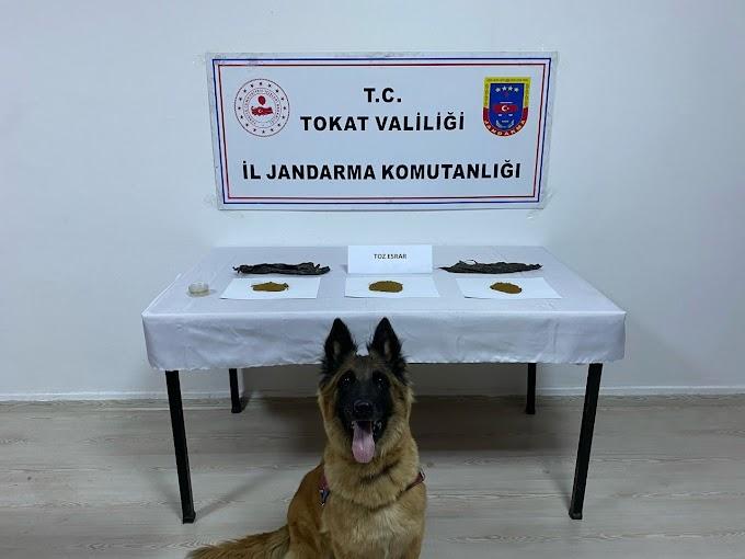 Tokat İl Jandarma Komutanlığı ekiplerince sorumluluk bölgelerinde