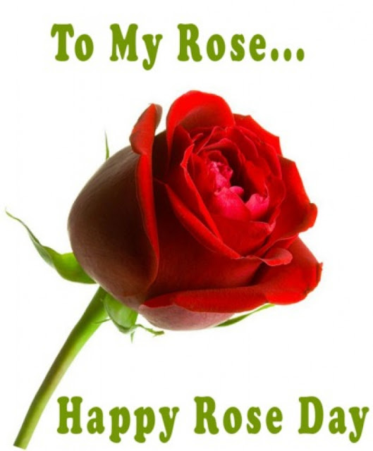 happy rose day wallpaper free download